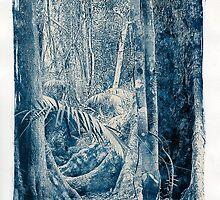 Kuranda Rainforest by Mollie Bosworth