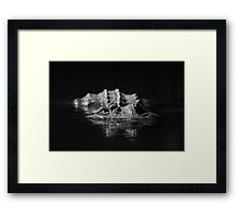 Lurking With Intent Framed Print