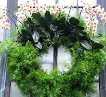 Orchid Wreath by AngieDavies