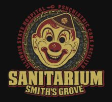The Smith's Grove Sanitarium by theycutthepower