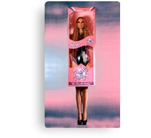 Dolly Package Canvas Print