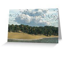 Le long de la plage / Along the beach Greeting Card