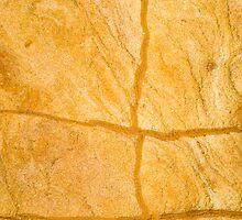 Yellow Rocks #3 by Syman  Kaye