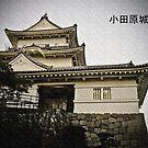 Odawara Castle by kaneko