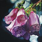 Foxgloves by Melissa Mailer-Yates