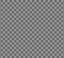Invisible. Transparent photoshop design! by 2monthsoff