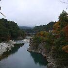 Shirakawa River by Cameron O'Neill
