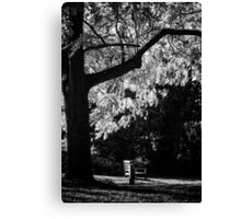 Monochrome Bench Under the Tree Canvas Print