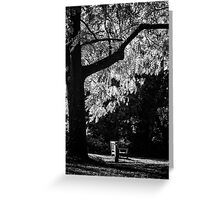 Monochrome Bench Under the Tree Greeting Card