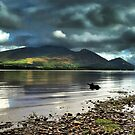 Bassenthwaite by Moth