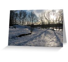 Winter in Sweden Greeting Card