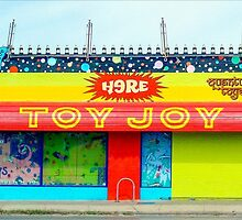 Old Toy Joy in Austin by dm-photography