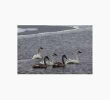 Tundra Swans in early winter Unisex T-Shirt