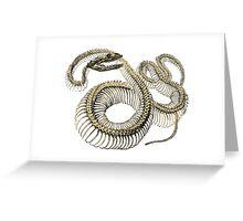 antique typographic vintage snake skeleton Greeting Card