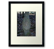 Unique Tree Framed Print