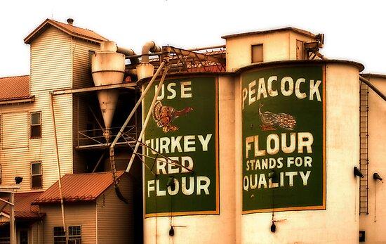 Peacock Flour by Ryan Houston