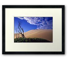 Pigface and Dune Framed Print