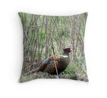 Spring Pheasant Throw Pillow