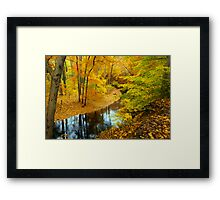 Ravine Path Framed Print