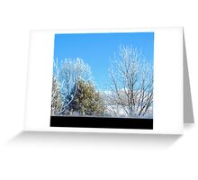 Baby, It's Cold Outside! Greeting Card