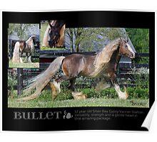 January - Bullet Poster