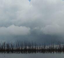 Dead Trees by WildestArt