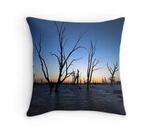 Tide and Times Throw Pillow