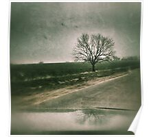 Drive by tree... Poster
