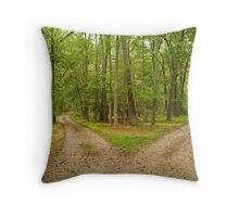 Two Paths Throw Pillow