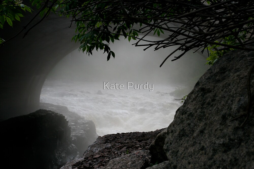 Through the Mist by Kate Purdy
