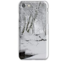 Wintry iPhone Case/Skin