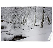 Wintry Poster