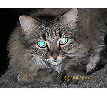 Captivating Eyes Photographic Print