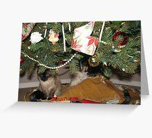 Waiting for Santa Greeting Card