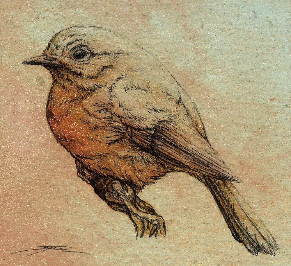 Red Robin by Ine Spee