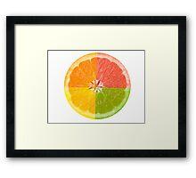 Citrus Fruit Framed Print