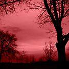 Red Dawn by Beckylee