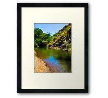 water hole Framed Print