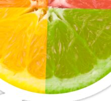 Citrus Fruit Sticker