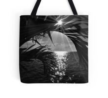 Somewhere in Mexico Tote Bag