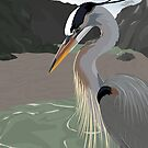 Great Blue Heron by Brandon S.