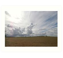 Barleyfield2 Art Print