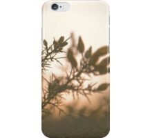 Hampstead Heath Sunset Flowers iPhone Case/Skin