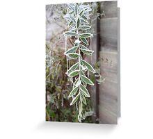 Iced Leaf Greeting Card