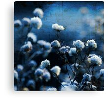 Blue Bokeh Canvas Print