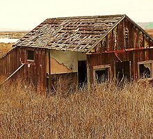 Fixer Upper by Andi Hardwick