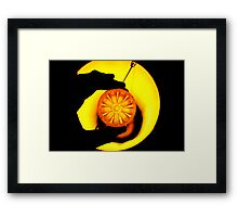 lemon light  Framed Print