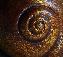 Escargot by Robert Meyer