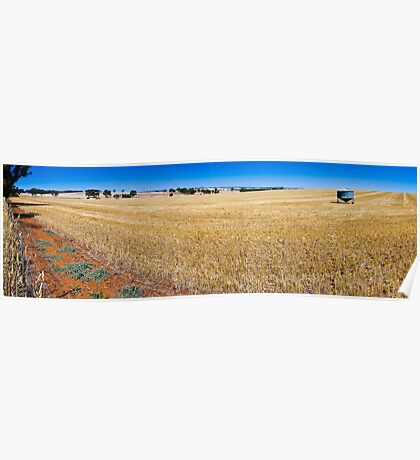 Dry Field Panorama Poster