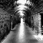 Along the Corridor of Power by John Nelson
